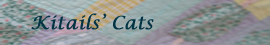 Kitails Cats Radio Button